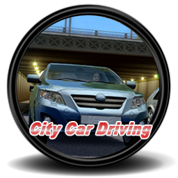 City Car Driving icon